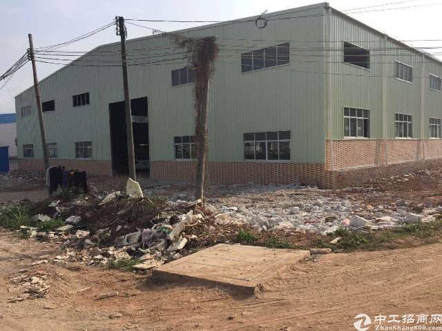 清溪滴水8米高全新钢结构厂房出租