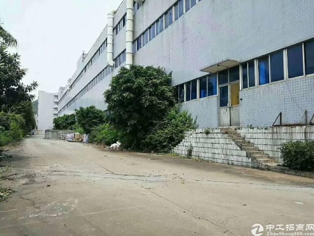 虎门镇独院标准三层厂房36000平方,花园式院子,一楼6米高-图3