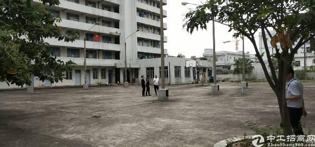 平湖华南城附近新出28000平方独院厂房招租(带红本)
