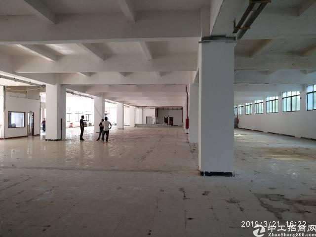 虎门镇花园式厂房2880平米/层出租