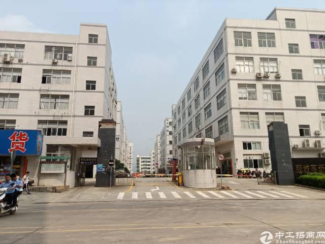 公明龙大高速出口1-3层7000平方出租
