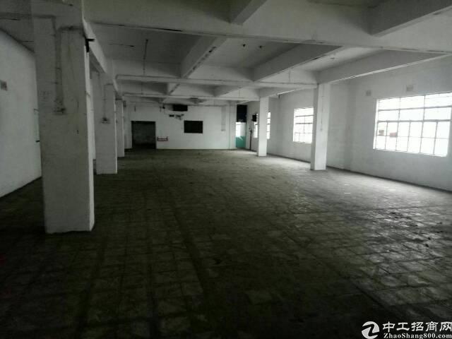 东莞横沥镇新出单一层标准厂房