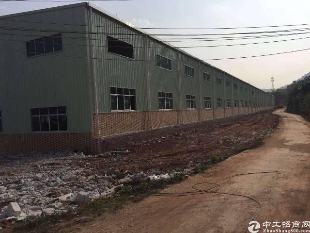 清溪镇原房东新建钢构,滴水8米