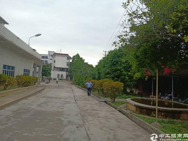 平湖惊现红本花园式独院厂房22100平方可分租