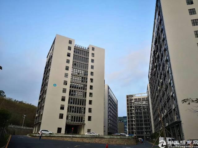 龙岗坪地红本厂房3200平方出租两部货梯形象好空地大-图2