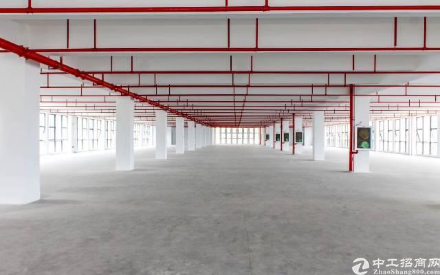 龙岗坪地红本厂房3200平方出租两部货梯形象好空地大
