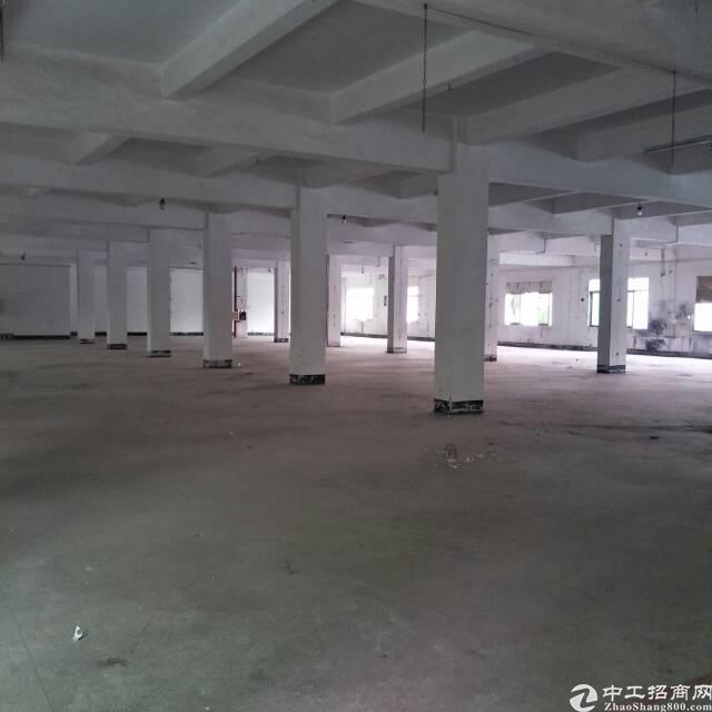 原房东自用厂房分租一楼2000平方