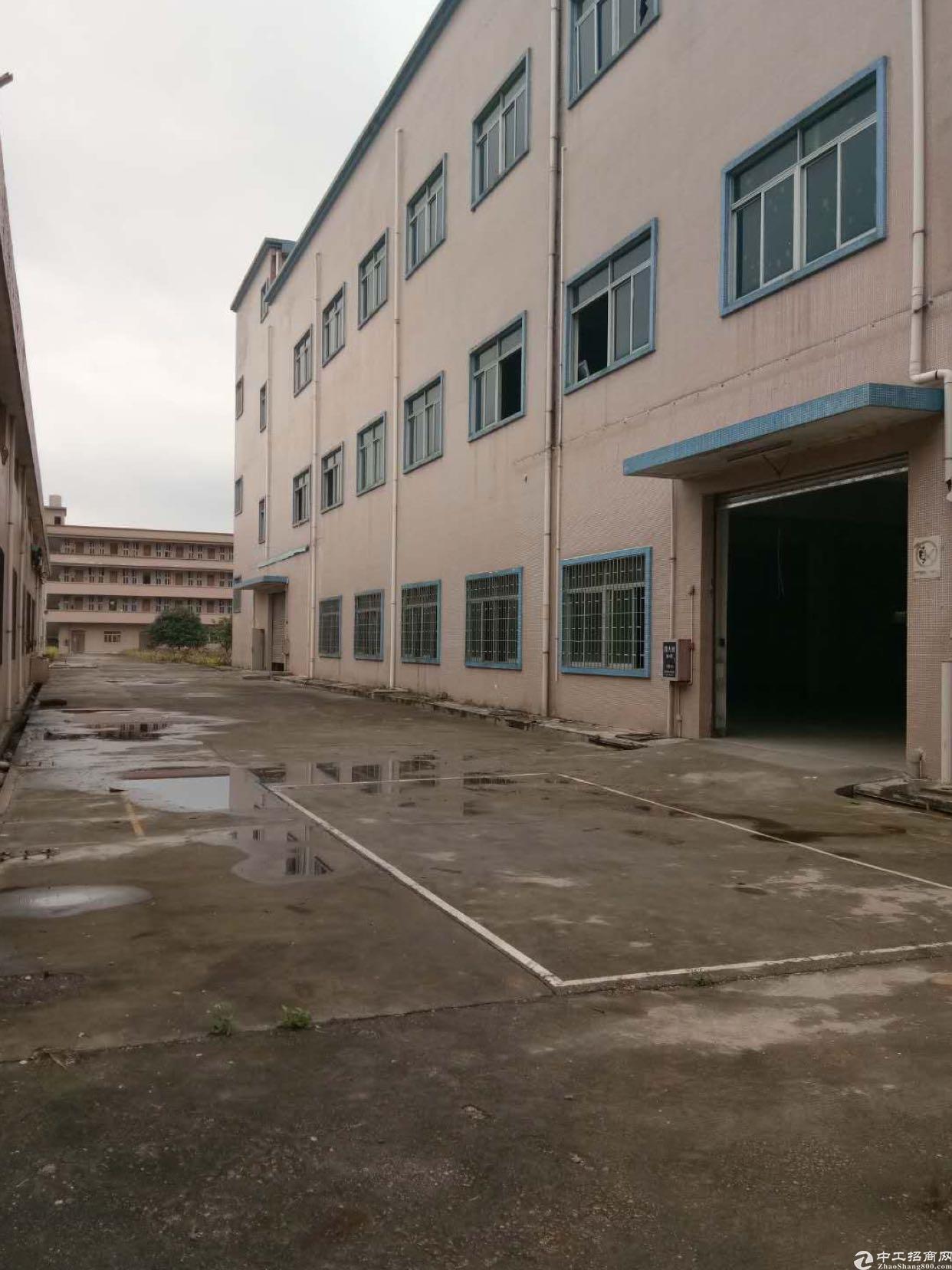 塘厦林村原房东花园式独栋标准厂房出租