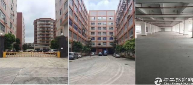 塘厦莲湖高新科技园2500平方四楼厂房出租