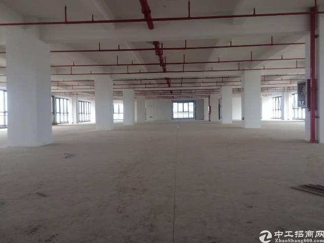 光明全新带红本研发厂房10万平方出租,最小100平方起分!-图5