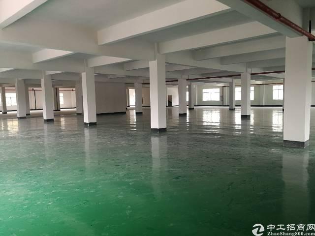 东莞清溪镇超漂亮的二楼厂房