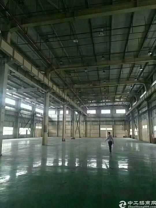 国道边独门独院5600平10米高标准钢构带阁楼卸货平台厂房