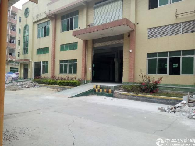 沙井共和新出一楼六米高带牛角3200平厂房出租