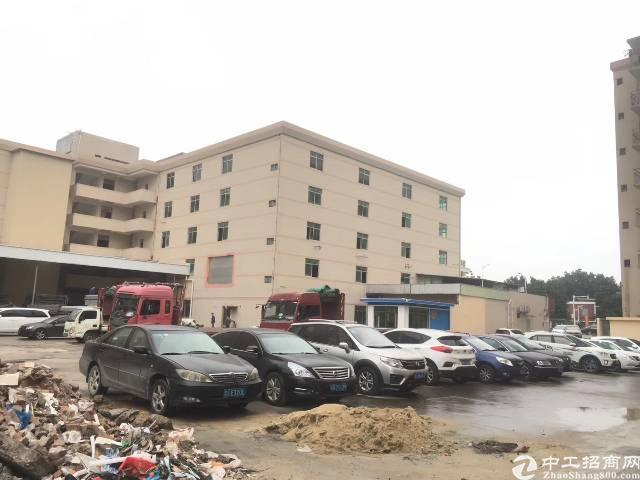 茶山镇工业区厂房出租,大小面积根据需求