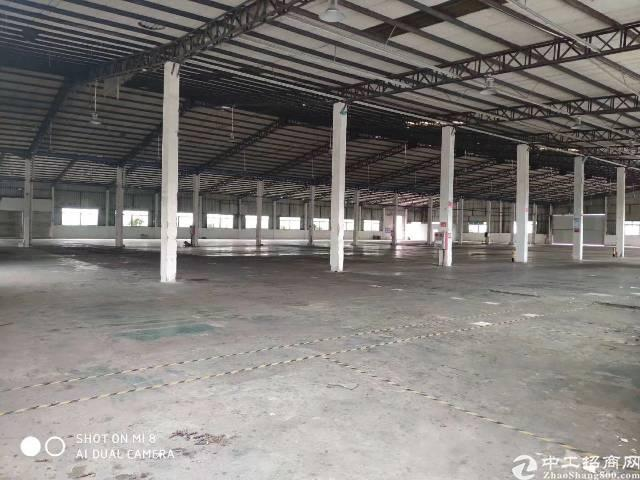 广州增城区新塘镇新出平地仓位置好空地大滴水10米-图2