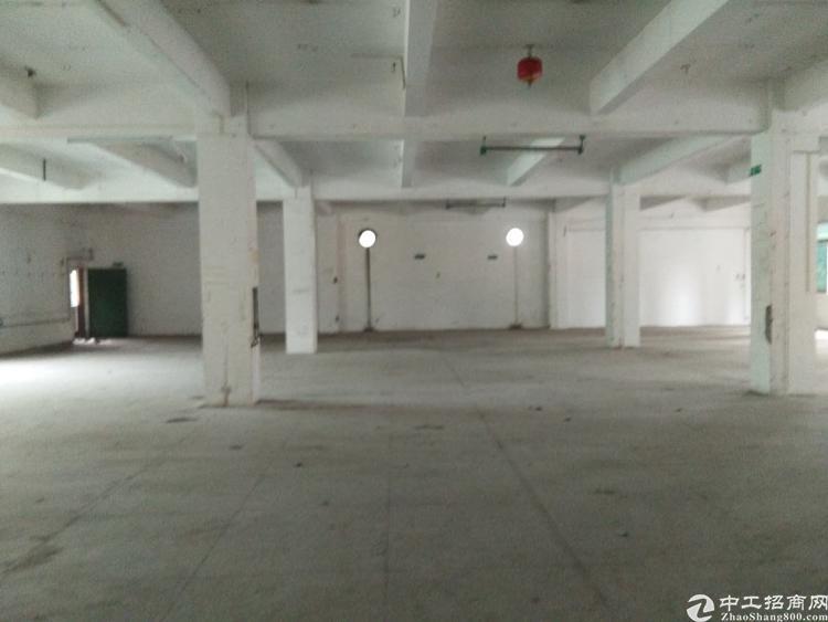 平龙路旁边标准厂房招租,超大空地,有电梯