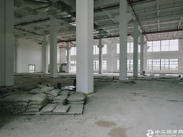 陈江镇大型工业区独栋厂房11500平方1楼10米高带牛角招租