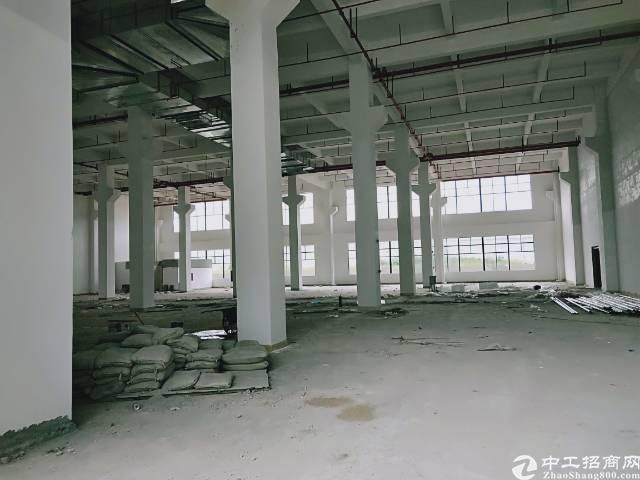 陈江镇大型工业区独栋厂房11500平方1楼10米高带牛角招租-图2