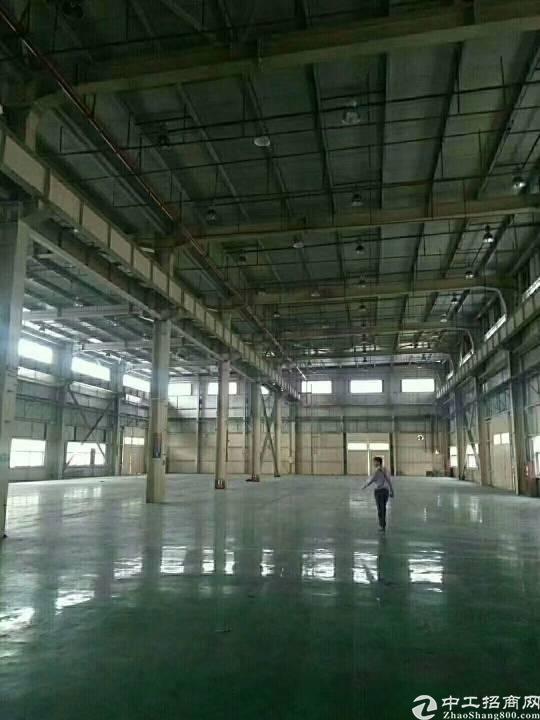 福永107国道旁10米钢构6000平米独门独院