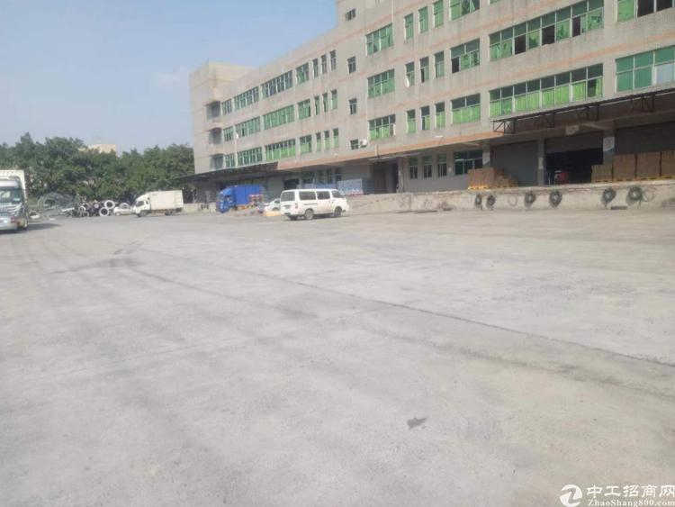 布吉丹竹头大型仓库.一楼9400平带装卸货平台