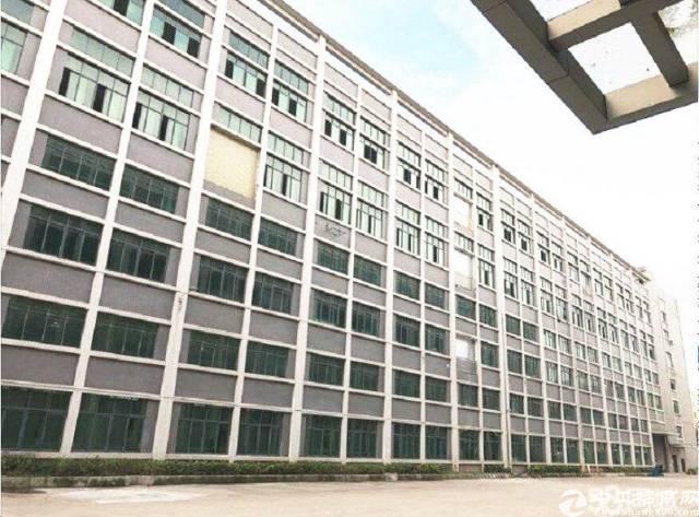 广东中山新出标准厂房出租带消防喷淋可办环评证件齐全