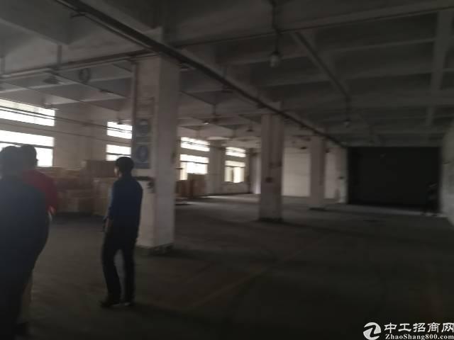 公明楼村公常路边一楼6米高2000平米租27