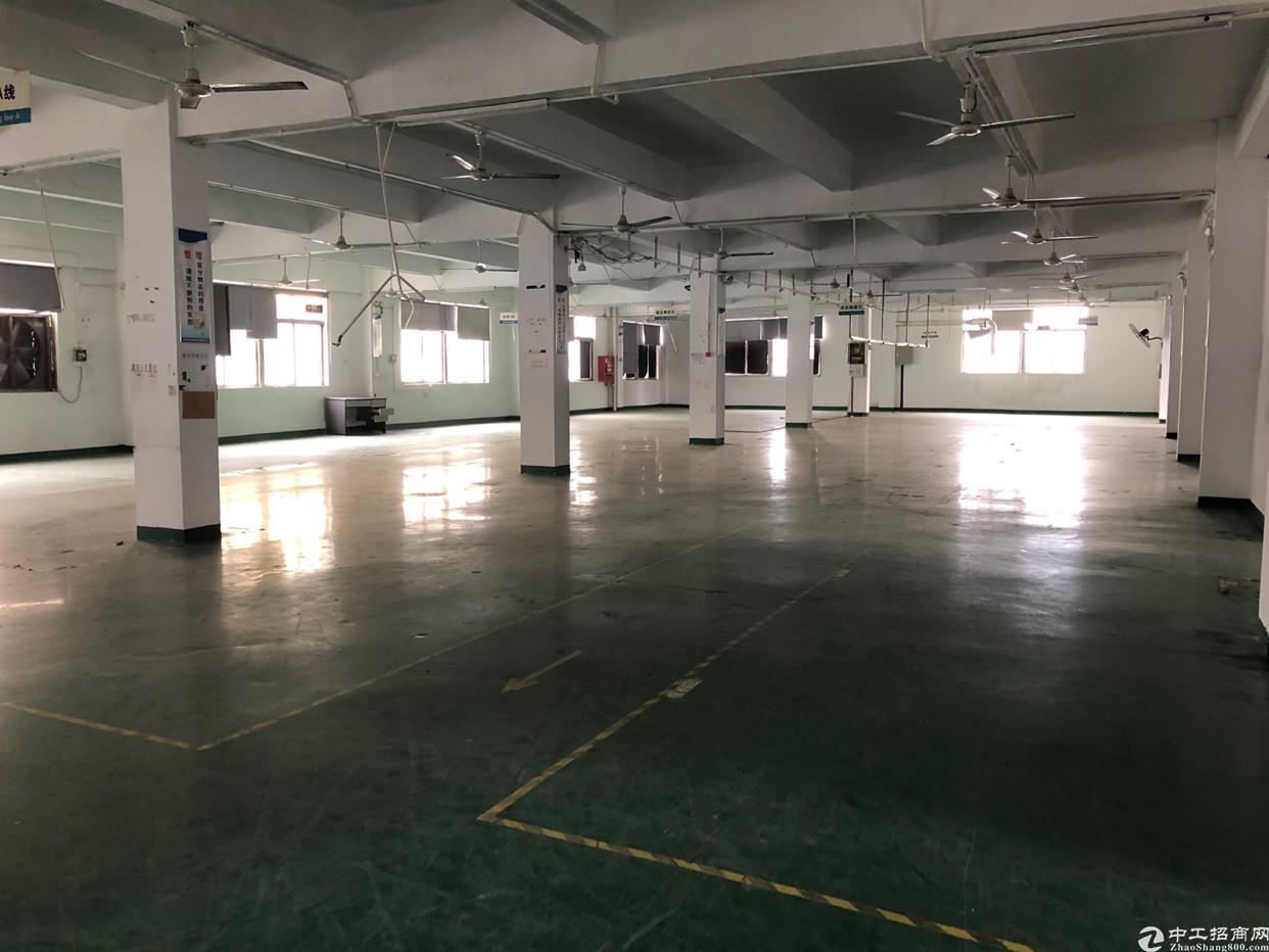 沙井庄村二路附近新出楼上1600平方带装修厂房出租
