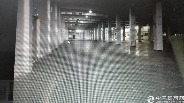 惠州新出花园式厂房5300平方火爆招租中