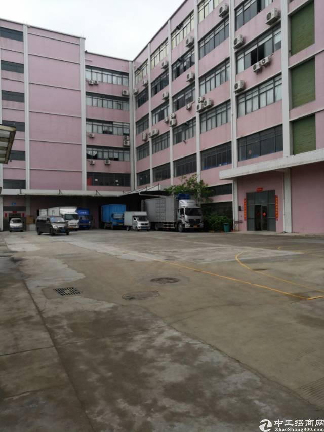 公明长圳红本园区一楼带牛角6.5米高(大小可分租)