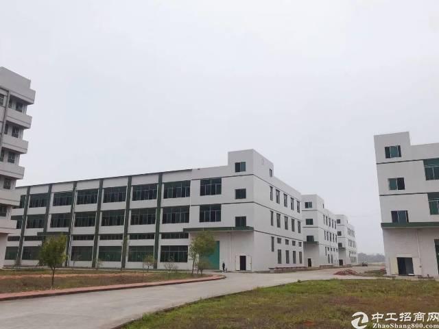 惠州博罗高速出口全新厂房10元起租