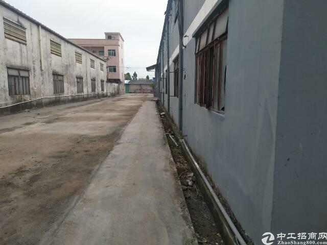 惠州市新空出钢结构独门独院厂房出租仓库出租铺面出租一千平方