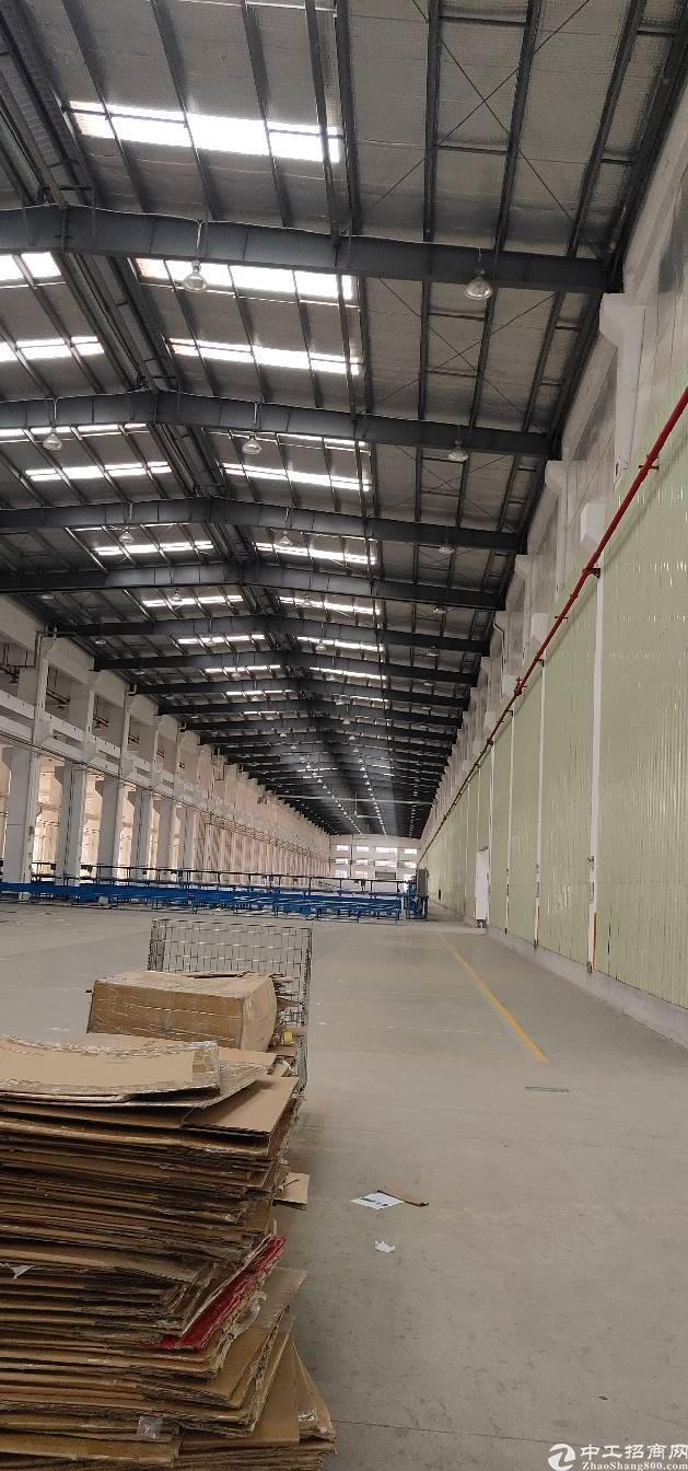 横岗荷坳地铁站口15米钢构招租可分租