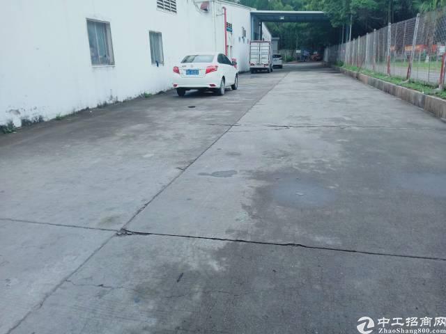 平湖山厦社区附近一楼大型仓库出租