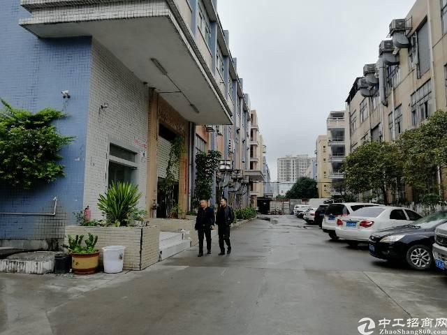 沙井步涌新出独院1楼1500平方,租金30元每平,精装修