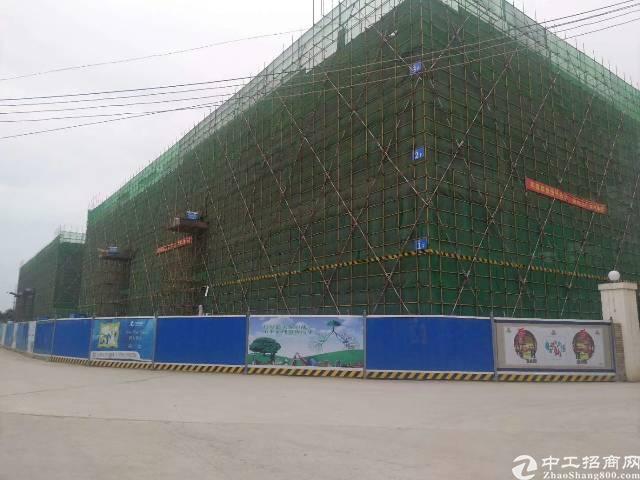 中心城区全新写字楼重点项目