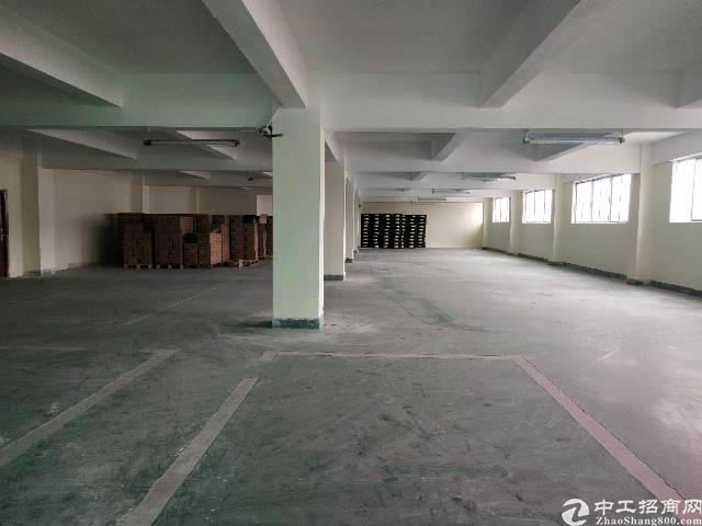 平龙东路楼上1430平带办公室装修厂房出租