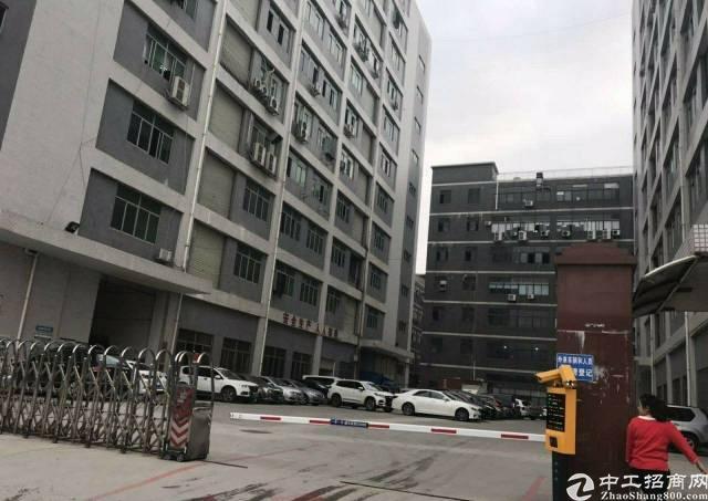 公明精装修三楼750平无转让红本厂房出租!