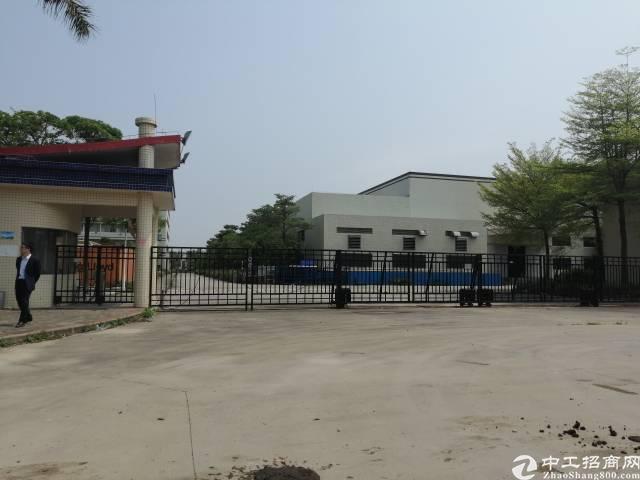 惠东县白花工业园区占地5360平方独院出售