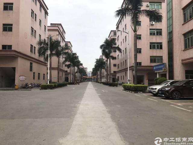 公明田寮大型工业园内带精装修厂房招租