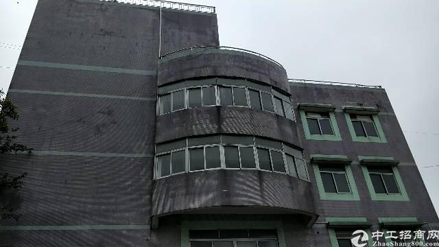 黄埔穗东1500平方2.3.4层标准仓库出租