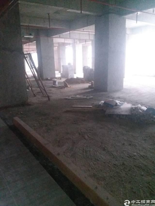 虎门镇新出写字楼2500平方,大小可分组,位于中心地段