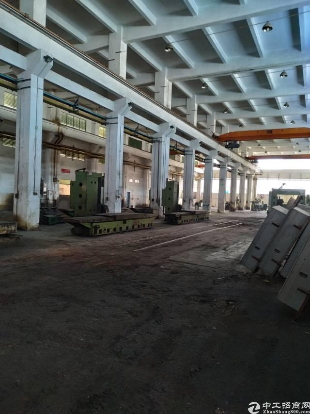 惠州市新出独栋标准单一层滴水12米7500平方出租-图5