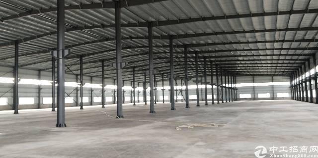 水口镇新出独院钢构仓库8000平方,大路边