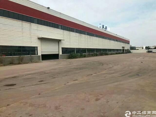 独院钢构9800平方米标准物流仓库出租
