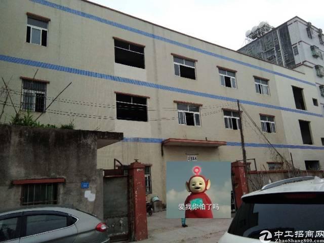 惠州市惠城区市中心江北街道独院楼房招租