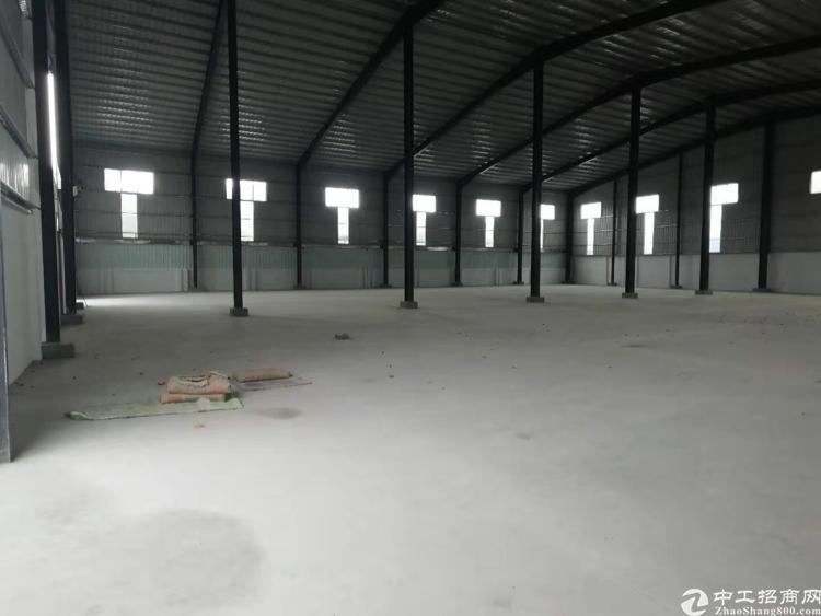 博罗圆洲全新钢构7年回本村委合同厂房