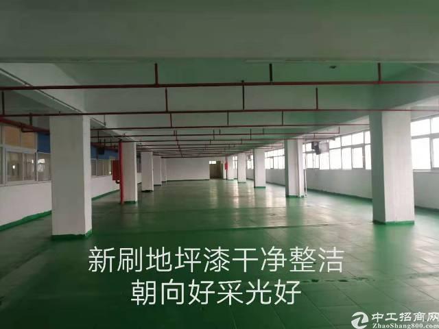 沙井松福大道新天虹附近楼上895平米有喷淋厂房出租好办环评