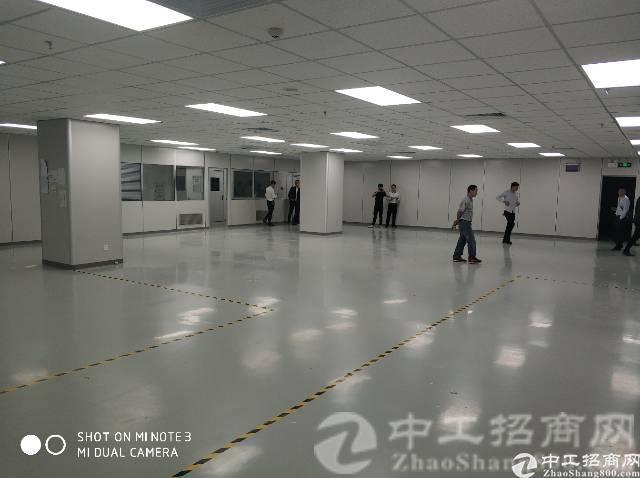 惠阳区镇隆镇标准厂房2万平,单层面积2000,实际面积出租-图2