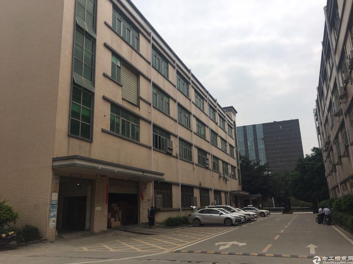 福永镇整层纯办公厂房2600平方出租,没有转让费用