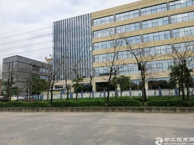 加石路全新写字楼商业综合体招租